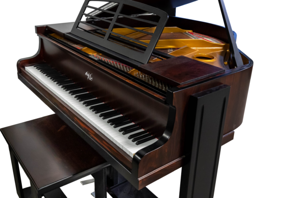 E'Rard ( The Vic ) One of a kind Baby Grand Piano