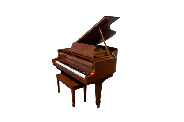 Essex Baby Grand with Pianodisc player system