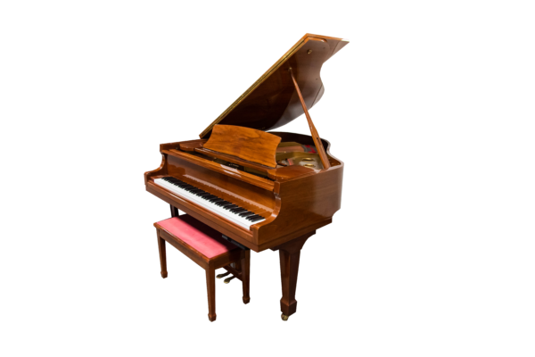 Samick Baby Grand with Pianodisc Player system